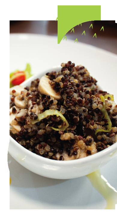 Receita preparada com Mix de Quinoa Vapza