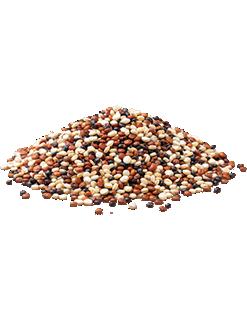 Mix de Quinoa Vapza