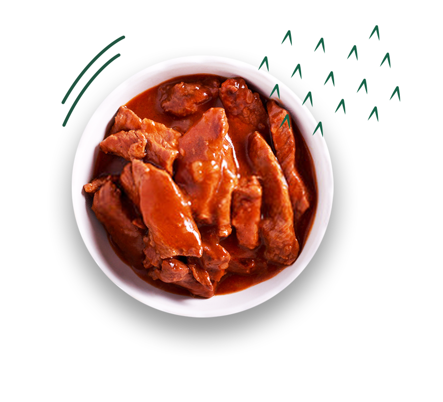 Carne em tiras Vapza